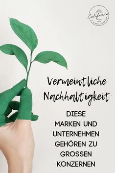 """""""Sustainable"""" brands and companies that belong to large corporations Nachhaltigkeit Organic Company, Elephant Shirt, Free Instagram, Good To Know, Sustainability, Diy Beauty, Environment, Mindfulness, Good Things"""