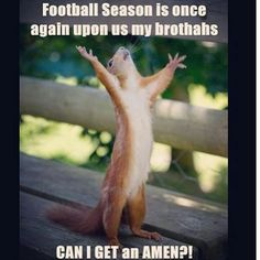 Amen everyone loves football. Can't wait for spring some stress relief