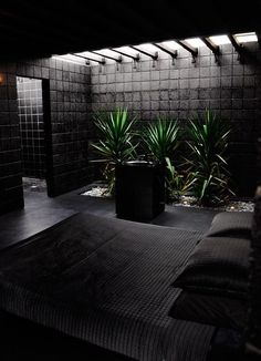 love skylight gardens!! the all black needs warmer feel with cozy fabrics n walls