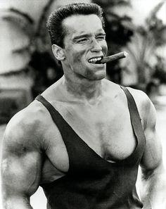 Arnold-Schwarzenegger-commando.jpg (337×425)