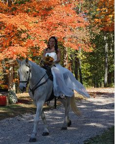 Can my horse walk down my aisle? I think that's fitting.