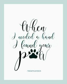 Dog Quotes Truths - - Dog Funny Laughing - Samoyed Dog Videos - Small Dog Chihuahua - Dog Names Male I Love Dogs, Puppy Love, Dog Tattoos, Tattoo Cat, Tattoo For Dog, Paw Print Tattoos, Ferret Tattoo, Beagle Tattoo, Chihuahua Tattoo