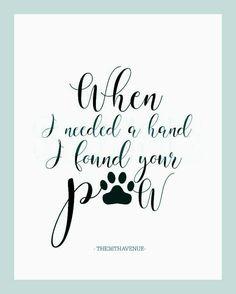 Dog Quotes Truths - - Dog Funny Laughing - Samoyed Dog Videos - Small Dog Chihuahua - Dog Names Male Tatoo Dog, Dog Tattoos, Tattoo Cat, Ferret Tattoo, Faith Tattoos, Music Tattoos, Girl Tattoos, I Love Dogs, Puppy Love