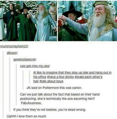 Does anyone agree that Richard Harris (the first Dumbledore actor)didn't seem gay AT ALL! But Michael Gambon (the second Dumbledore actor) seemed so gay! It is so weird the difference between actors and they both played Dumbledore really well! Saga Harry Potter, Harry Potter Love, Harry Potter Universal, Harry Potter Memes, Harry Potter World, Harry Potter Imagines, Drarry, Dramione, Superwholock