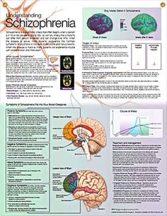 Understanding Schizophrenia anatomy poster defines schizophasia and discusses possible causes, treatment and management options.