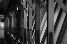 Biblioteca da FAU/USP by Weeth, via Flickr