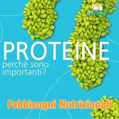 Le proteine sono importanti, ma tu lo sai perchè? #capirelanutrizione