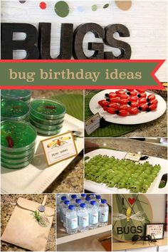 Ready to bug out over the details of this boy's 6th birthday bug themed party?  Jello petri worms, cheese beetles, bug juice and more make this one bugtastic party!