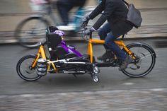 10+ Lådcykel ideas   cargo bike, bike, bullitt cargo bike