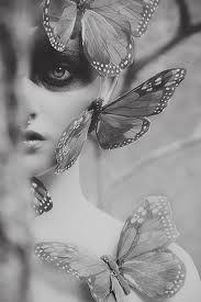 monarch butterfly by K I R A