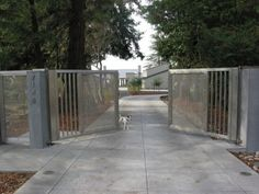 Here is a metal driveway gate with a cute dog overseeing the gate closing.