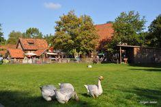 '' aus dem Blog 'Hannover: Zoo, Hotel und etwas Nightlive'