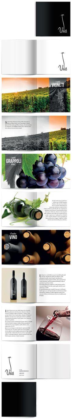 Portfolio Corsi Ilas - Domenico Tafuro, Docente: Vari Docenti, Categoria: Graphic Design - © ilas 2013