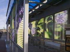 catherine widgery transforms bus stops into virtual gardens