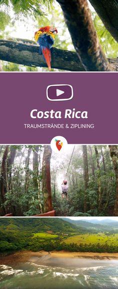 Im Vlog der Urlaubspiraten nehmen wir euch mit an den Traumstrand Playa Corozalito in Punta Islita und zu einem richtigen Abenteuer – einer Ziplining Tour.