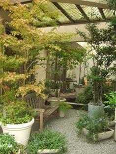 鉢植えの庭