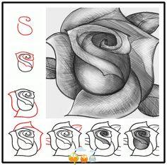 Mooie roos, makkelijk te tekenen