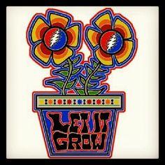 Grateful Dead - Let it Grow