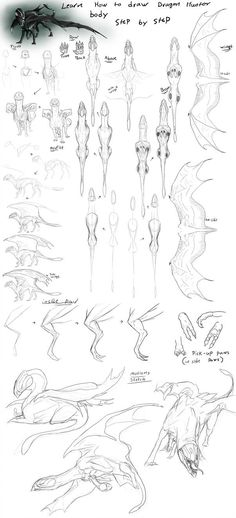 here is the rest of how to draw Dragon hunter body guide here is the guide to the heads i really hope this are useful for you who have adopted a hunter . How To Draw Hunter Bodys Pencil Art Drawings, Art Drawings Sketches, Animal Drawings, Cool Drawings, Drawing Techniques, Drawing Tips, Drawing Ideas, Dragon Anatomy, Dragon Poses