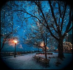 blue night...quiet place with a festive feel