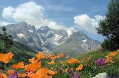 Situé au bord du parc national des Ecrins, le pic de la Meije fait partie d'une chaîne de montagnes de 15 km, composée de plusieurs pics. Le glacier possède de belles grottes de glace et parmi les plus beaux parcours de ski hors-piste du monde
