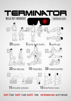 The Terminator Workout