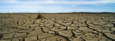 Climate Scientist James Hansen: We Aren't Doing Nearly Enough to Slow Climate Change - Regeneration International Policy Change, Sustainable Food, Global Warming, Mother Earth, Book Review, Climate Change, Sustainability, Environment, Ocean