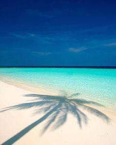 beach photography beach body beach pictures beach surf beach girl beach out… - Strandhaus Ocean Beach, Sunset Beach, Photography Beach, Beach Wallpaper, I Love The Beach, Beach Scenes, Tropical Paradise, Beach Photos, Pictures Of The Beach