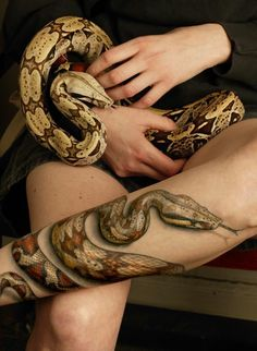 if only i can find someone to tattoo a ball python around my ankle to my foot this realistic :(