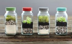 Tiny Terrariums. Upcycle all of those jars in your refrigerator and create new worlds