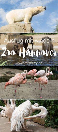 MrsBerry.de Ausflugstipps | Ausflug mit Kind in den Erlebnis- Zoo Hannover. | Der Erlebnis-Zoo Hannover wurde schon mehrfach als Bester Zoo ausgezeichnet. Die sieben Themenwelten des Zoo sind an den natürlichen Lebensraum der Tiere angelehnt und ermöglichen den Besuchern Tier-Begegnungen nahezu ohne Gitter. Wir stellen unsere Top 5 Attraktionen des Zoos vor und sagen, dass der Erlebnis-Zoo Hannover die Auszeichnung zum besten Zoo vollkommen zu recht trägt. Zoos In Deutschland, Stuff To Do, Things To Do, World Pictures, Travel With Kids, Travel Destinations, Beautiful Places, Road Trip, Germany