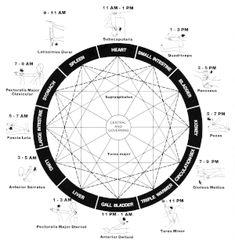 Tanran Reiki: The Five Relationship Healing Symbols