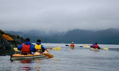 Orcas Cove Sea Kayaking | Ketchikan Tours and Shore Excursions