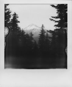 "89 Likes, 2 Comments - Christopher M. Ebarb (@chrisebarb) on Instagram: ""Mt. Hood exposed on Impossible Black and White Instant film with a Polaroid SX70. #landscape…"""