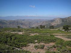 Sierra de Baza. Junio 10 | Alcoiama Blog: Cositas de andar por casa: RECETAS DE COCINA, FOTOS.