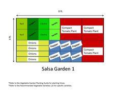 Plant a salsa garden
