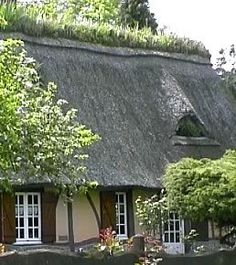 Love the thatched roof and the irises planted on the roof ridge. But I want blue or lavender shutters! Or even soft green.