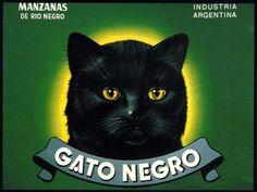 Gato Negro Black Cat Halloween Apple Fruit Crate Box Label Art Print