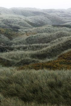 {lux et amor} - photography: landscape - Natur Landscape Photography, Nature Photography, Travel Photography, Landscape Pics, Watercolor Landscape, Landscape Paintings, Beautiful World, Beautiful Places, Peaceful Places