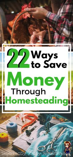 22 Ways to Save Money Through Homesteading. You can save money, be frugal and thrifty on your homestead, in your garden, kitchen and more.