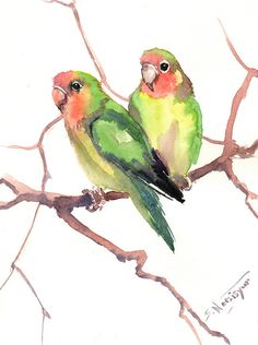Lovebirds Original watercolor painting 12 X 9 in by ORIGINALONLY, $27.00
