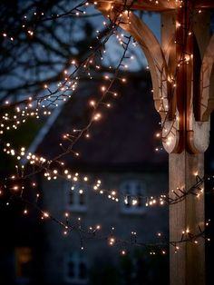 Sparkly outdoor lights.