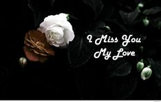 69 new ideas funny urdu poetry love , funny urdu 69 new ideas funny urdu poetry love , I Miss You Wallpaper, Images Wallpaper, Wallpapers, Hd Love, Love Mom, Miss You Mum, Are You Happy, Good Morning Photos, Morning Pictures