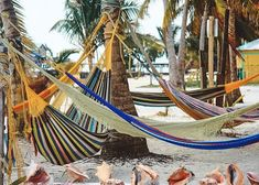 Off the coast of Belize, Caye Caulker is paradise. The pace will take you on island time before you know it. A jewel in the Caribbean, Caye Caulker, Belize is t Best Camping Hammock, Hammock Tent, Jungle Hammock, Wooden Hammock, Backpacking Hammock, Backyard Hammock, Rope Hammock, Portable Hammock, Outdoor Hammock