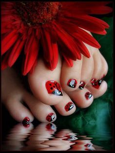 ladybug toenails, such a cute idea!  Free Nail Technician Information   http://www.nailtechsuccess.com/nail-technicians-secrets/?hop=megairmone