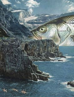 Fish Out Of Water by collageartbyjesse.