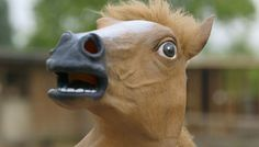 HORSE (by TomSka) - I just have one question... WHY ?! x'D