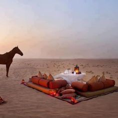 Travel to exotic places and enjoy their exotic lifestyle. ...Romantic Desert lounge.