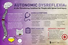 All about autonomic dysreflexia >>> See it. Believe it. Do it. Watch thousands of spinal cord injury videos at SPINALpedia.com Nursing Exam, Nursing Care Plan, Nursing School Notes, Critical Care Nursing, Autonomic Dysreflexia, Quadriplegic, Acute Care, Spinal Cord Injury, University Life