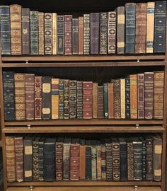 Upscale Vintage Leather. Simply beautiful. Can you imagine the hands that have held these books? There is history in between the pages.